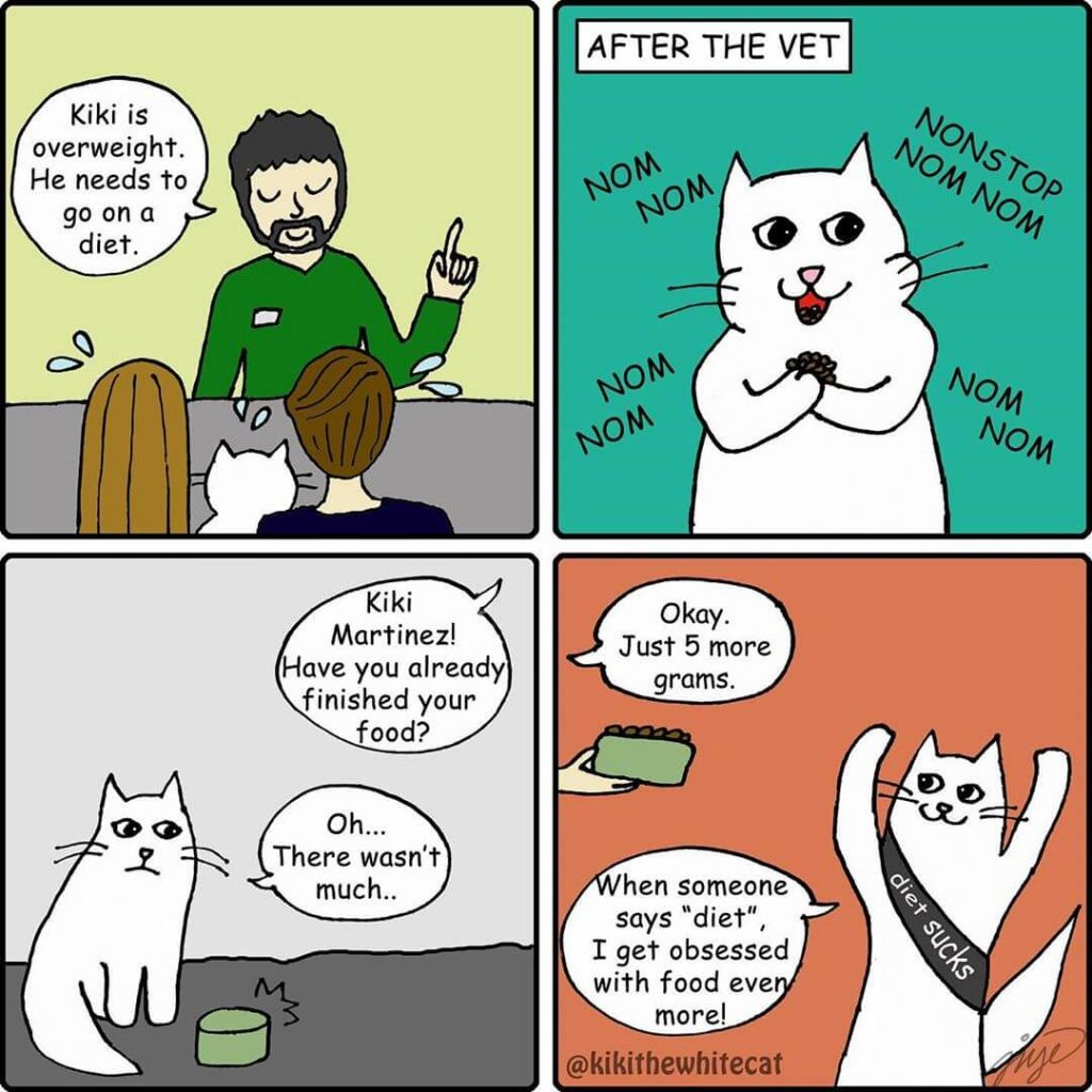 cartoons of cats losing weight